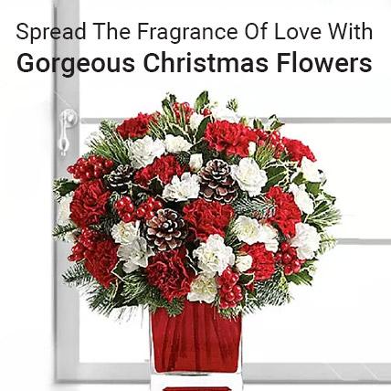 Gift Christmas Flowers Online